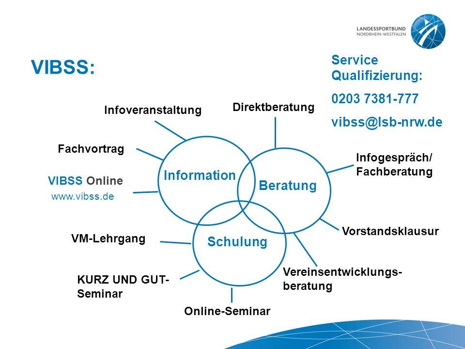 VIBSS: Information Beratung Schulung VIBSS Online Infoveranstaltung Fachvortrag Direktberatung Infogespräch/ Fachberatung Vorstandsklausur Vereinsentw
