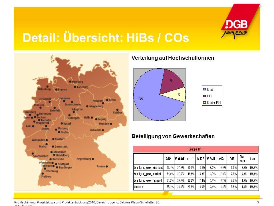Profilschärfung: Projektskizze und Projektentwicklung 2010, Bereich Jugend, Sabrina Klaus-Schelletter, 26. Januar 2010 3 Detail: Übersicht: HiBs / COs