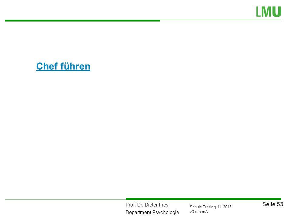 Prof. Dr. Dieter Frey Department Psychologie Seite 53 Schule Tutzing 11 2015 v3 mb mA Chef führen