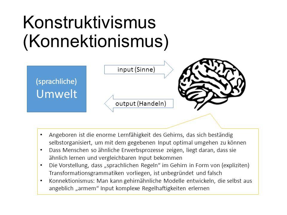 Konstruktivismus (Konnektionismus) (sprachliche) Umwelt input (Sinne) output (Handeln) Angeboren ist die enorme Lernfähigkeit des Gehirns, das sich be