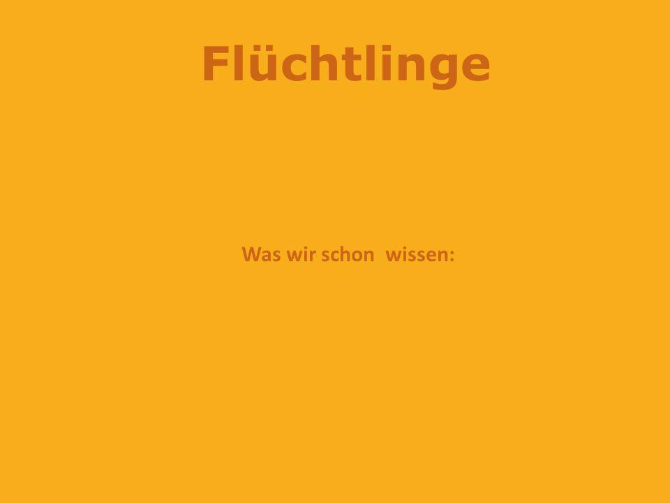 Flüchtlinge … können kein Deutsch sind arm werden gemobbt oder gehasst und verfolgt haben Hunger haben keine Wohnung hatten viel Leid haben Angst haben Krieg erlebt haben keine Familie mehr gehen nicht in die Schule werden schlecht behandelt
