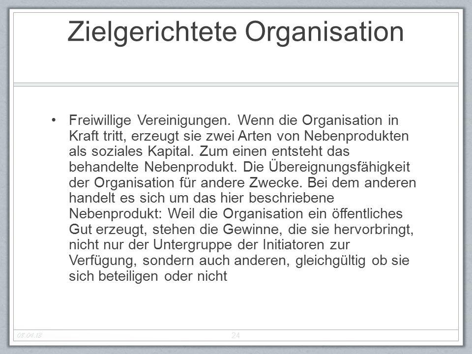 Zielgerichtete Organisation Freiwillige Vereinigungen. Wenn die Organisation in Kraft tritt, erzeugt sie zwei Arten von Nebenprodukten als soziales Ka