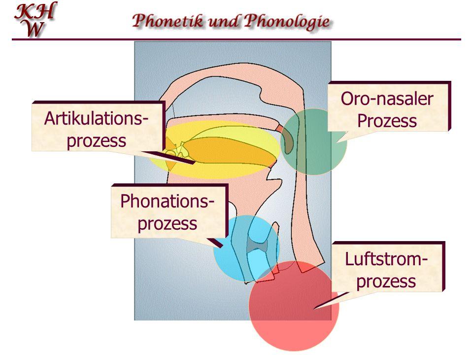 Luftstrom- prozess Phonations- prozess Oro-nasaler Prozess Artikulations- prozess