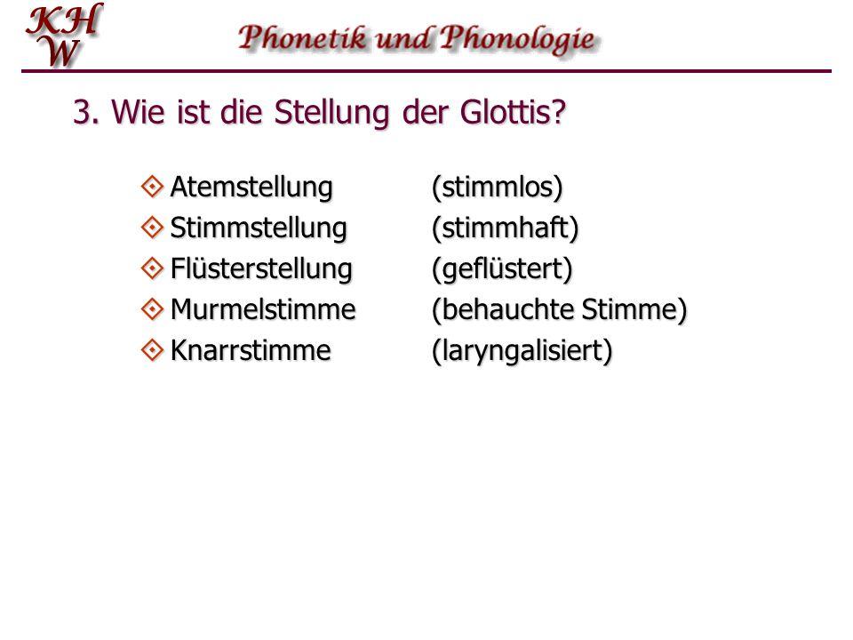 3. Wie ist die Stellung der Glottis?  Atemstellung (stimmlos)  Stimmstellung (stimmhaft)  Flüsterstellung (geflüstert)  Murmelstimme(behauchte Sti