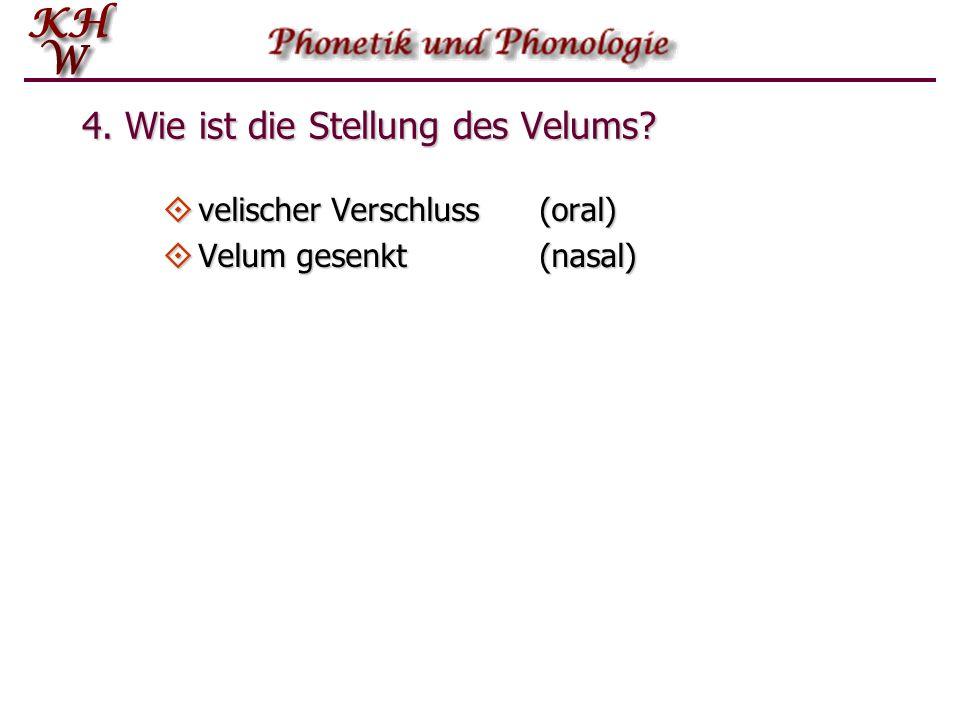 4. Wie ist die Stellung des Velums?  velischer Verschluss (oral)  Velum gesenkt(nasal)