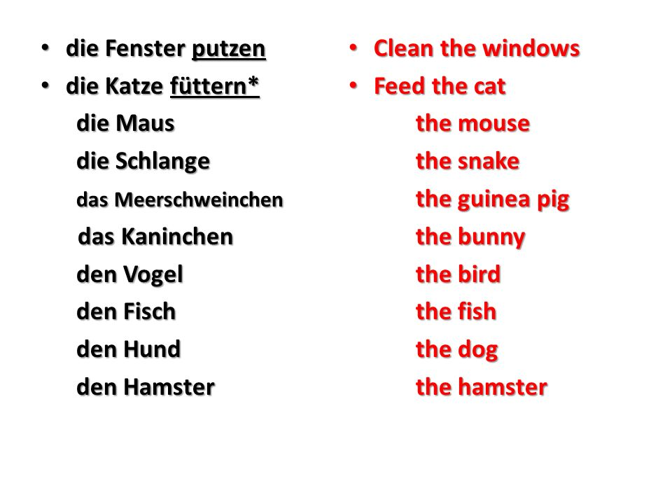 die Fenster putzen die Fenster putzen die Katze füttern* die Katze füttern* die Maus die Maus die Schlange die Schlange das Meerschweinchen das Meerschweinchen das Kaninchen das Kaninchen den Vogel den Vogel den Fisch den Fisch den Hund den Hund den Hamster den Hamster Clean the windows Clean the windows Feed the cat Feed the cat the mouse the snake the guinea pig the bunny the bird the fish the dog the hamster