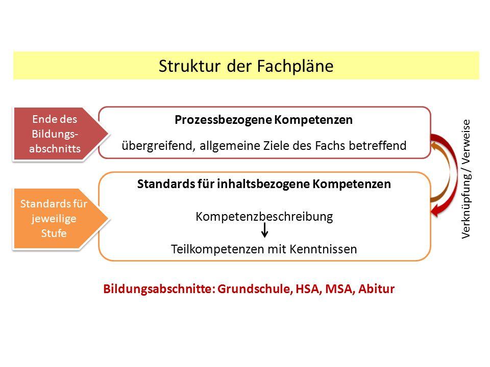 Struktur der Fachpläne Prozessbezogene Kompetenzen übergreifend, allgemeine Ziele des Fachs betreffend Standards für inhaltsbezogene Kompetenzen Kompe