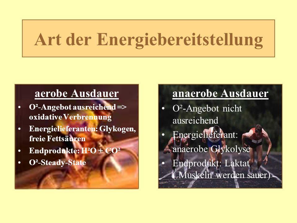 Art der Energiebereitstellung aerobe Ausdauer O²-Angebot ausreichend => oxidative Verbrennung Energielieferanten: Glykogen, freie Fettsäuren Endproduk