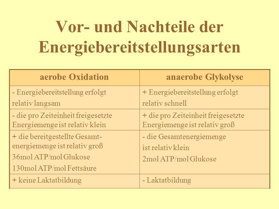 Vor- und Nachteile der Energiebereitstellungsarten - Laktatbildung+ keine Laktatbildung - die Gesamtenergiemenge ist relativ klein 2mol ATP/mol Glukos