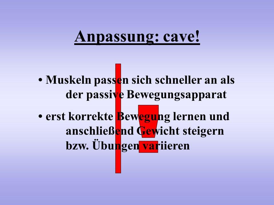 Anpassung: cave! Muskeln passen sich schneller an als der passive Bewegungsapparat erst korrekte Bewegung lernen und anschließend Gewicht steigern bzw