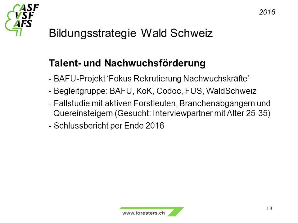 Bildungsstrategie Wald Schweiz Talent- und Nachwuchsförderung - BAFU-Projekt 'Fokus Rekrutierung Nachwuchskräfte' - Begleitgruppe: BAFU, KoK, Codoc, FUS, WaldSchweiz - Fallstudie mit aktiven Forstleuten, Branchenabgängern und Quereinsteigern (Gesucht: Interviewpartner mit Alter 25-35) - Schlussbericht per Ende 2016 2016 13