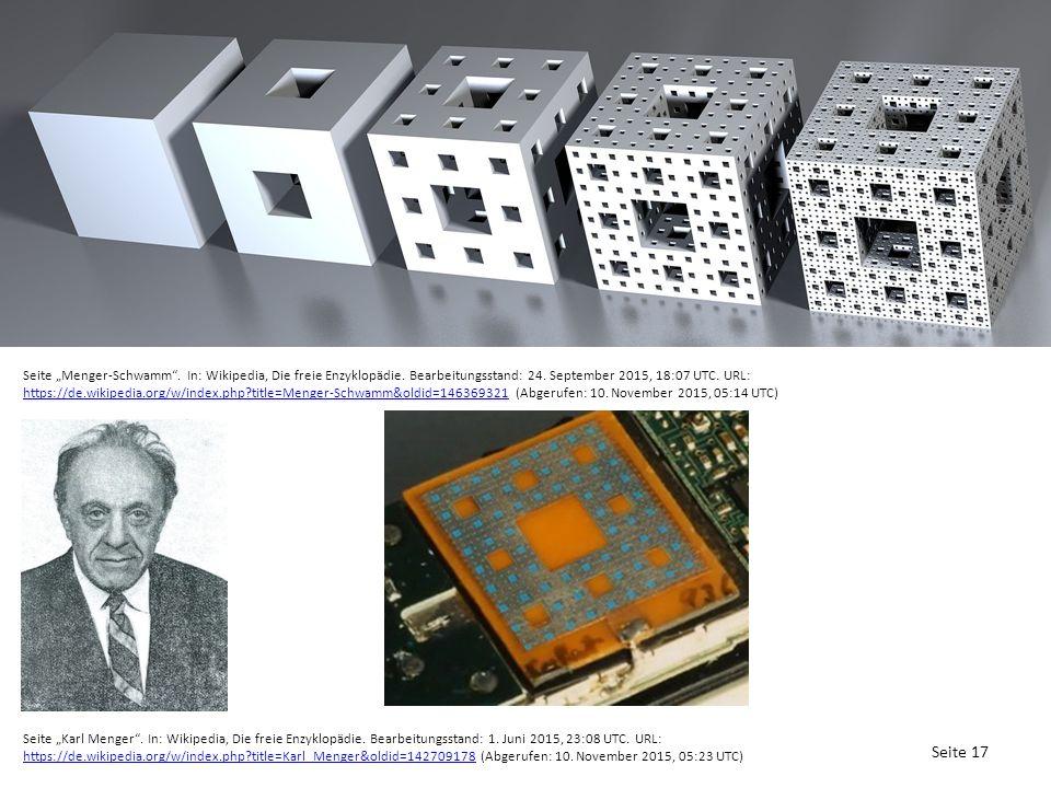 """Seite 17 Seite """"Menger-Schwamm . In: Wikipedia, Die freie Enzyklopädie."""