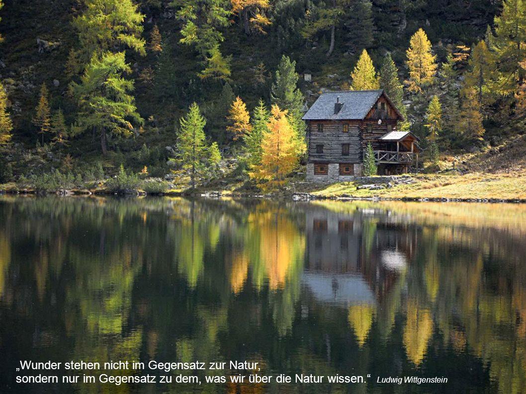 """""""Wunder stehen nicht im Gegensatz zur Natur, sondern nur im Gegensatz zu dem, was wir über die Natur wissen."""" Ludwig Wittgenstein"""