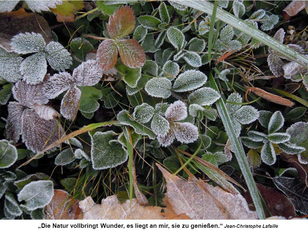 """""""Die Natur vollbringt Wunder, es liegt an mir, sie zu genießen. Jean-Christophe Lafaille"""