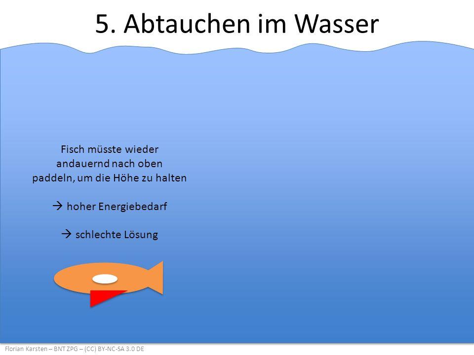 5. Abtauchen im Wasser Florian Karsten – BNT ZPG – (CC) BY-NC-SA 3.0 DE Fisch müsste wieder andauernd nach oben paddeln, um die Höhe zu halten  hoher
