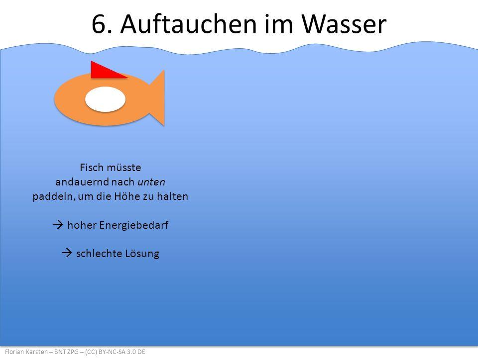 6. Auftauchen im Wasser Florian Karsten – BNT ZPG – (CC) BY-NC-SA 3.0 DE Fisch müsste andauernd nach unten paddeln, um die Höhe zu halten  hoher Ener