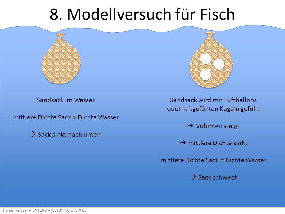 8. Modellversuch für Fisch Florian Karsten – BNT ZPG – (CC) BY-NC-SA 3.0 DE Sandsack im Wasser mittlere Dichte Sack > Dichte Wasser  Sack sinkt nach