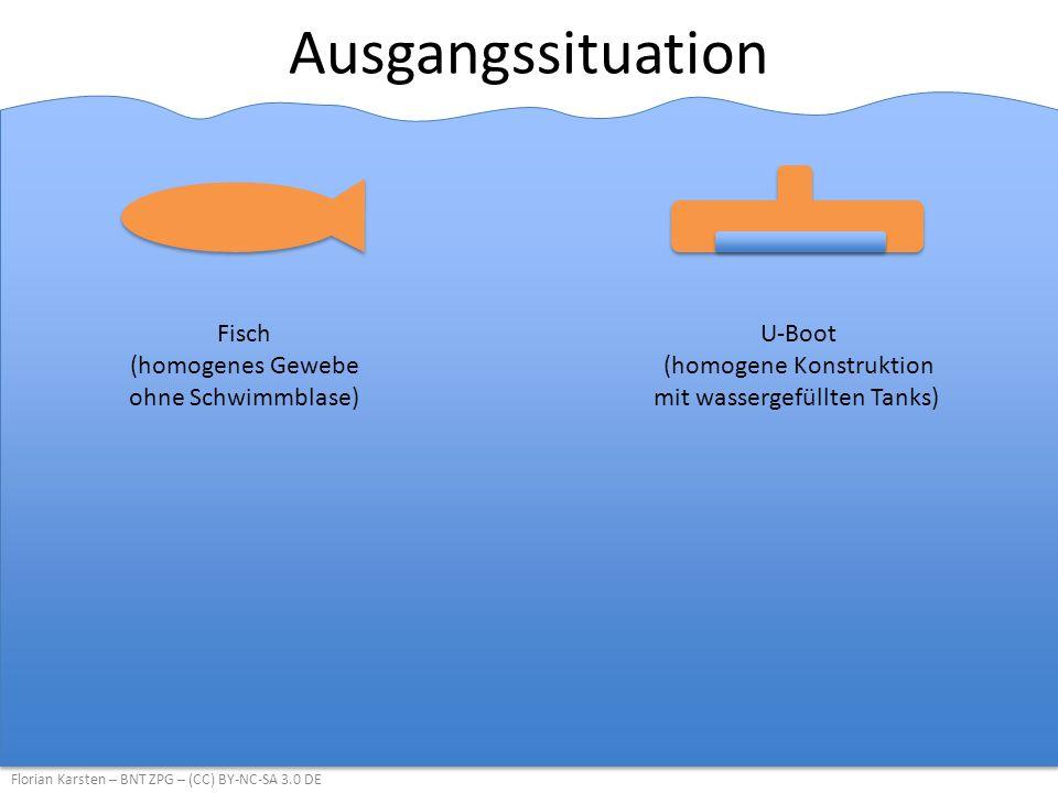 Ausgangssituation Florian Karsten – BNT ZPG – (CC) BY-NC-SA 3.0 DE Fisch (homogenes Gewebe ohne Schwimmblase) U-Boot (homogene Konstruktion mit wassergefüllten Tanks)