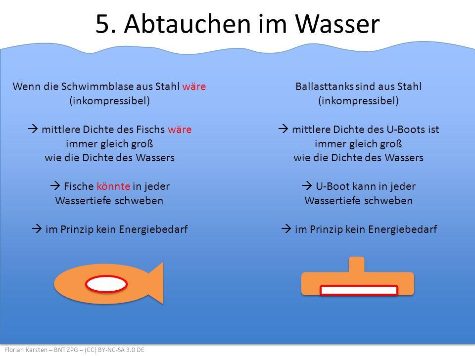 5. Abtauchen im Wasser Florian Karsten – BNT ZPG – (CC) BY-NC-SA 3.0 DE Wenn die Schwimmblase aus Stahl wäre (inkompressibel)  mittlere Dichte des Fi