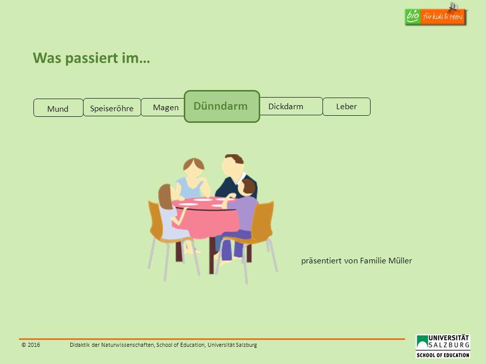 © 2016Didaktik der Naturwissenschaften, School of Education, Universität Salzburg Was passiert im… präsentiert von Familie Müller Mund Speiseröhre Mag