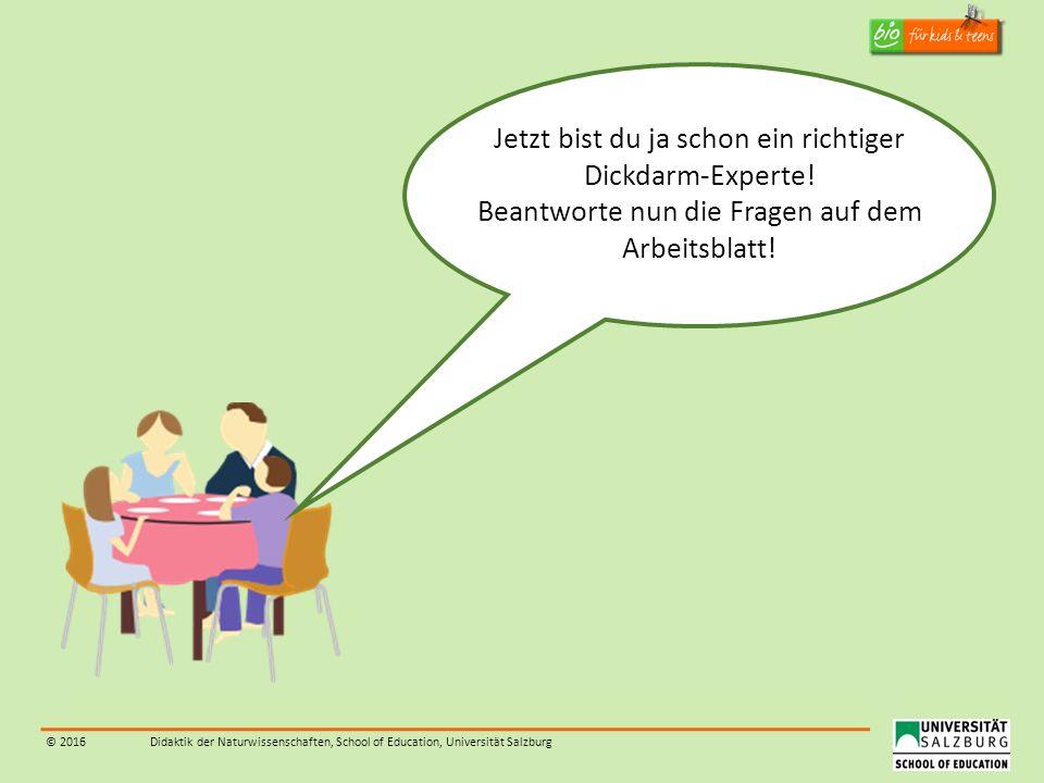 © 2016Didaktik der Naturwissenschaften, School of Education, Universität Salzburg Jetzt bist du ja schon ein richtiger Dickdarm-Experte! Beantworte nu