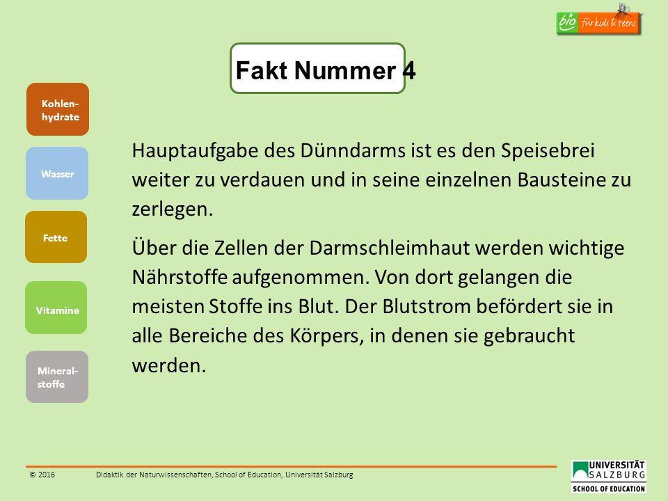 © 2016Didaktik der Naturwissenschaften, School of Education, Universität Salzburg Hauptaufgabe des Dünndarms ist es den Speisebrei weiter zu verdauen