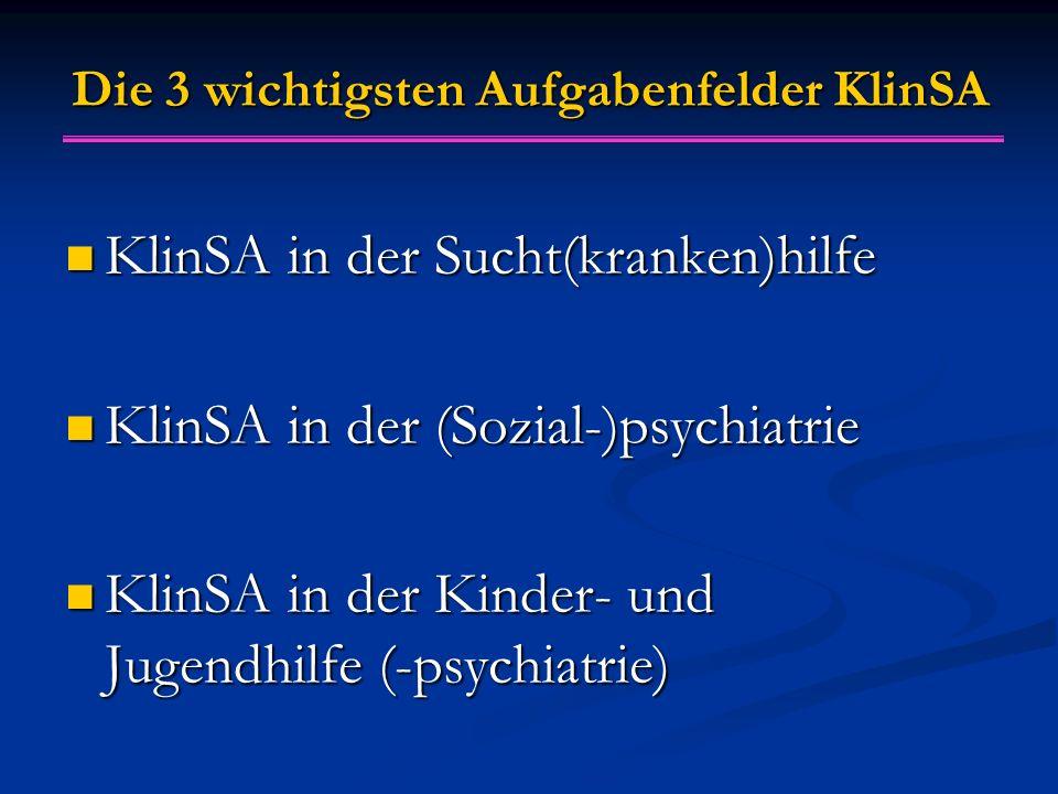 Die 3 wichtigsten Aufgabenfelder KlinSA KlinSA in der Sucht(kranken)hilfe KlinSA in der Sucht(kranken)hilfe KlinSA in der (Sozial-)psychiatrie KlinSA in der (Sozial-)psychiatrie KlinSA in der Kinder- und Jugendhilfe (-psychiatrie) KlinSA in der Kinder- und Jugendhilfe (-psychiatrie)