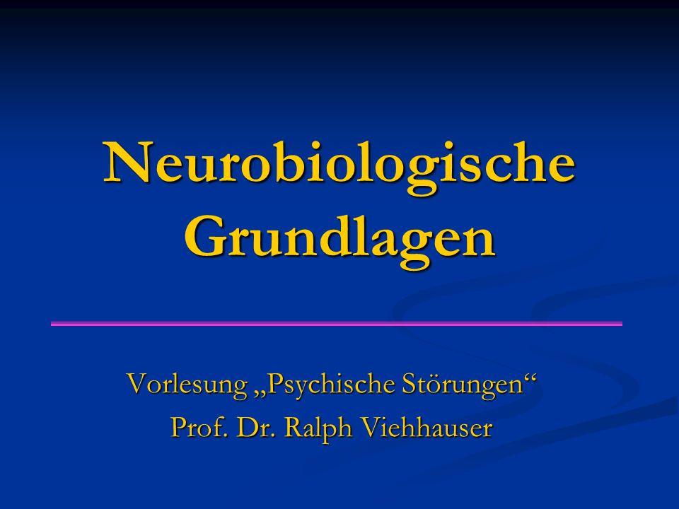 """Neurobiologische Grundlagen Vorlesung """"Psychische Störungen Prof. Dr. Ralph Viehhauser"""