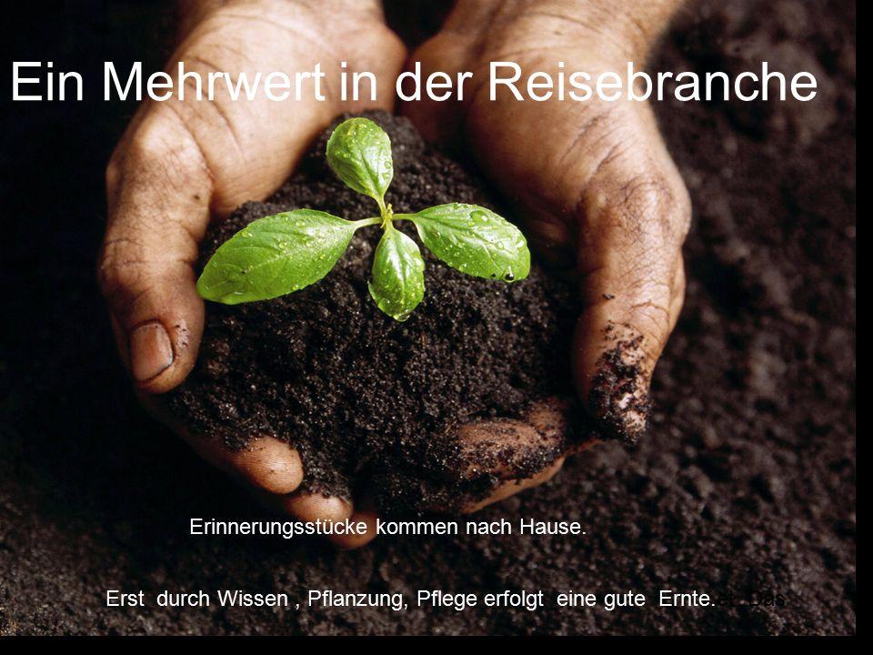 Ein Mehrwert in der Reisebranche Erst durch Wissen, Pflanzung, Pflege erfolgt eine gute Ernte.et Das Erinnerungsstücke kommen nach Hause.