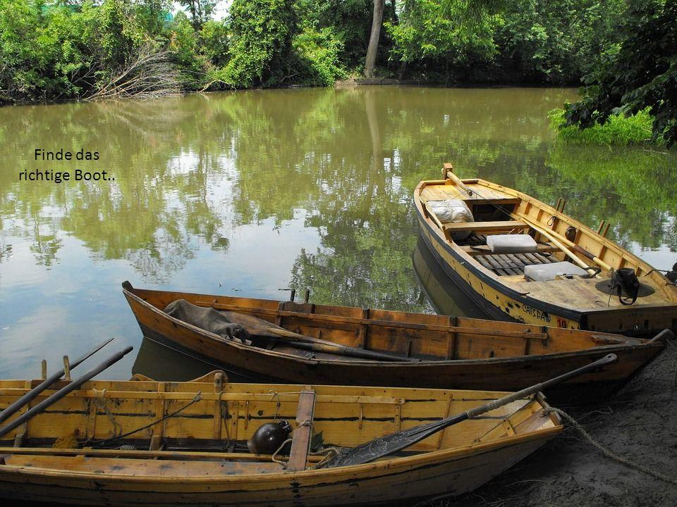 Finde das richtige Boot..