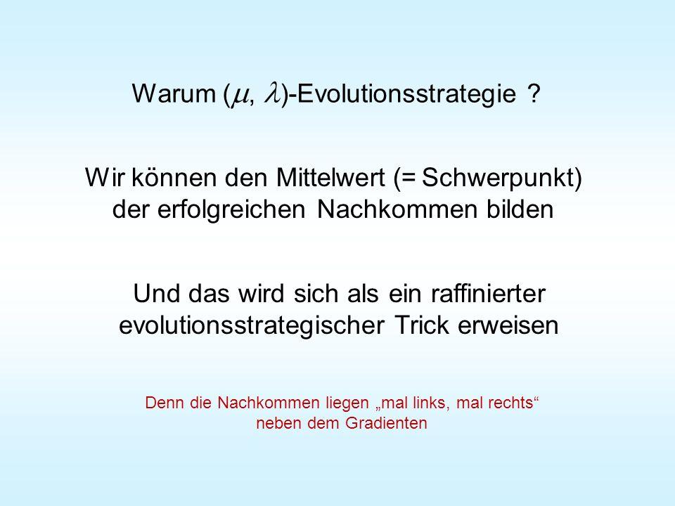 Warum ( , )-Evolutionsstrategie ? Wir können den Mittelwert (= Schwerpunkt) der erfolgreichen Nachkommen bilden Und das wird sich als ein raffinierte