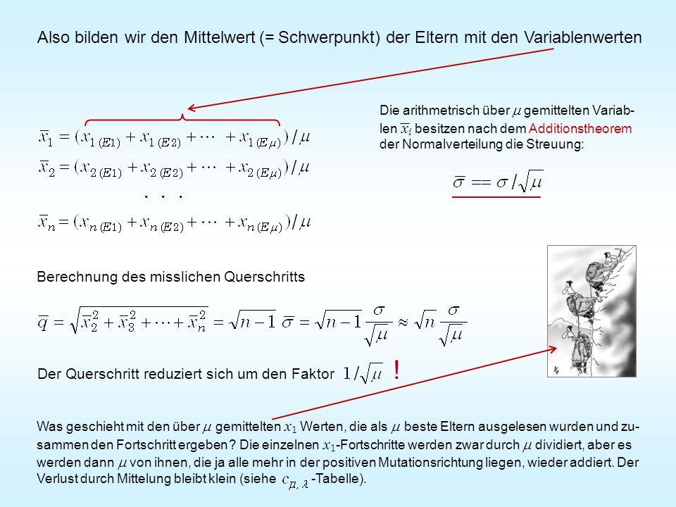 Also bilden wir den Mittelwert (= Schwerpunkt) der Eltern mit den Variablenwerten Der Querschritt reduziert sich um den Faktor !... Berechnung des mis