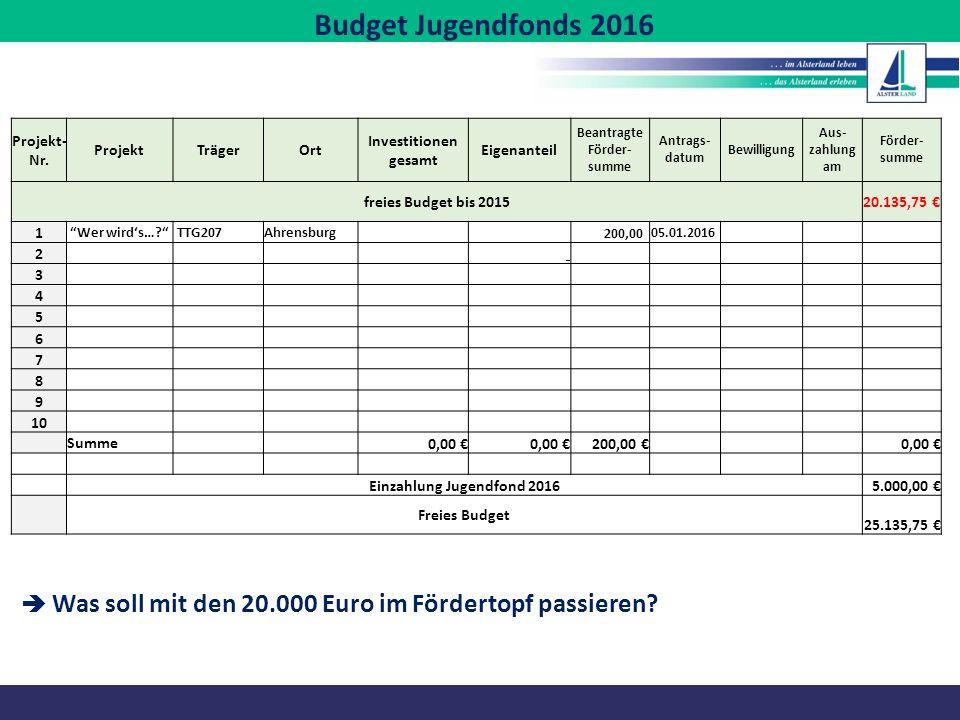 Budget Jugendfonds 2016 Projekt- Nr. ProjektTrägerOrt Investitionen gesamt Eigenanteil Beantragte Förder- summe Antrags- datum Bewilligung Aus- zahlun