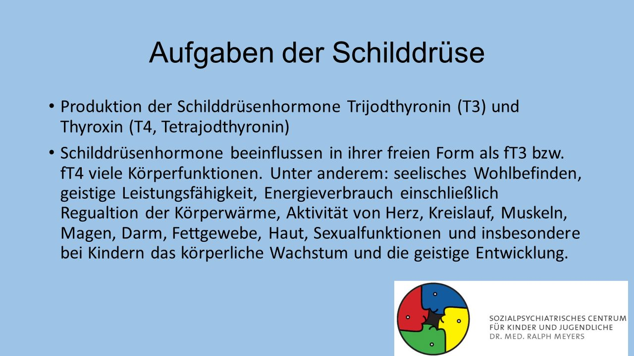 Aufgaben der Schilddrüse Produktion der Schilddrüsenhormone Trijodthyronin (T3) und Thyroxin (T4, Tetrajodthyronin) Schilddrüsenhormone beeinflussen i