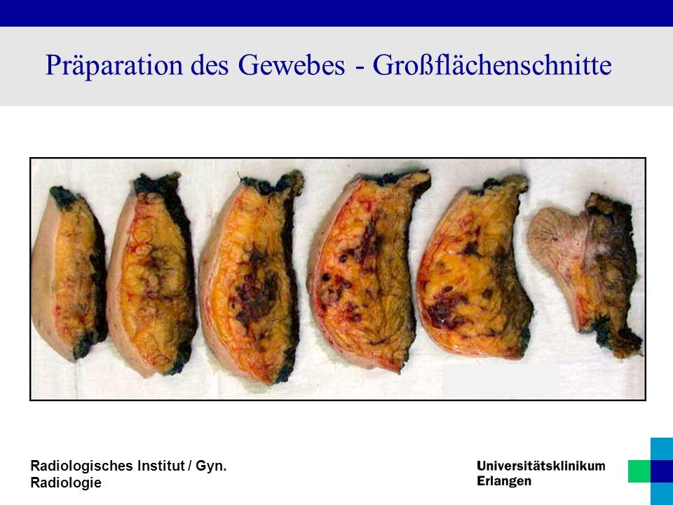 Radiologisches Institut / Gyn. Radiologie Präparation des Gewebes - Großflächenschnitte