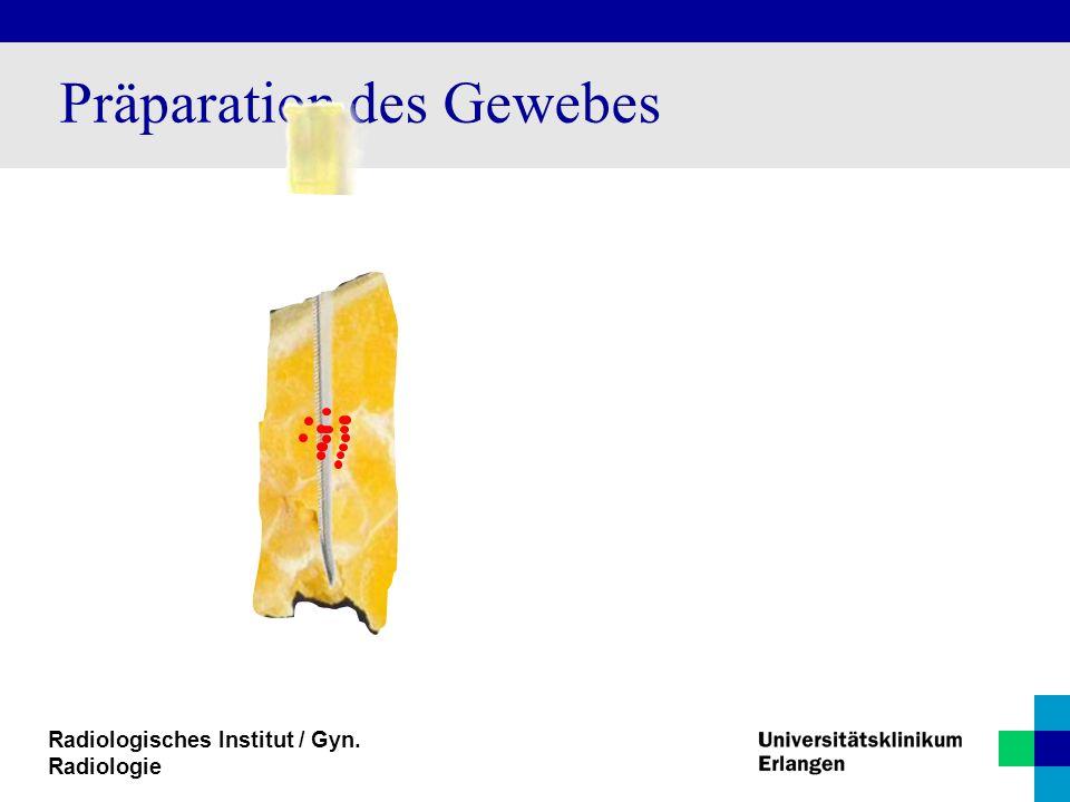 Radiologisches Institut / Gyn. Radiologie Präparation des Gewebes
