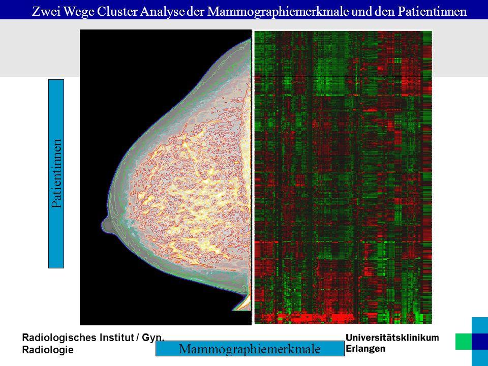 Radiologisches Institut / Gyn. Radiologie Mammographiemerkmale Patientinnen Zwei Wege Cluster Analyse der Mammographiemerkmale und den Patientinnen