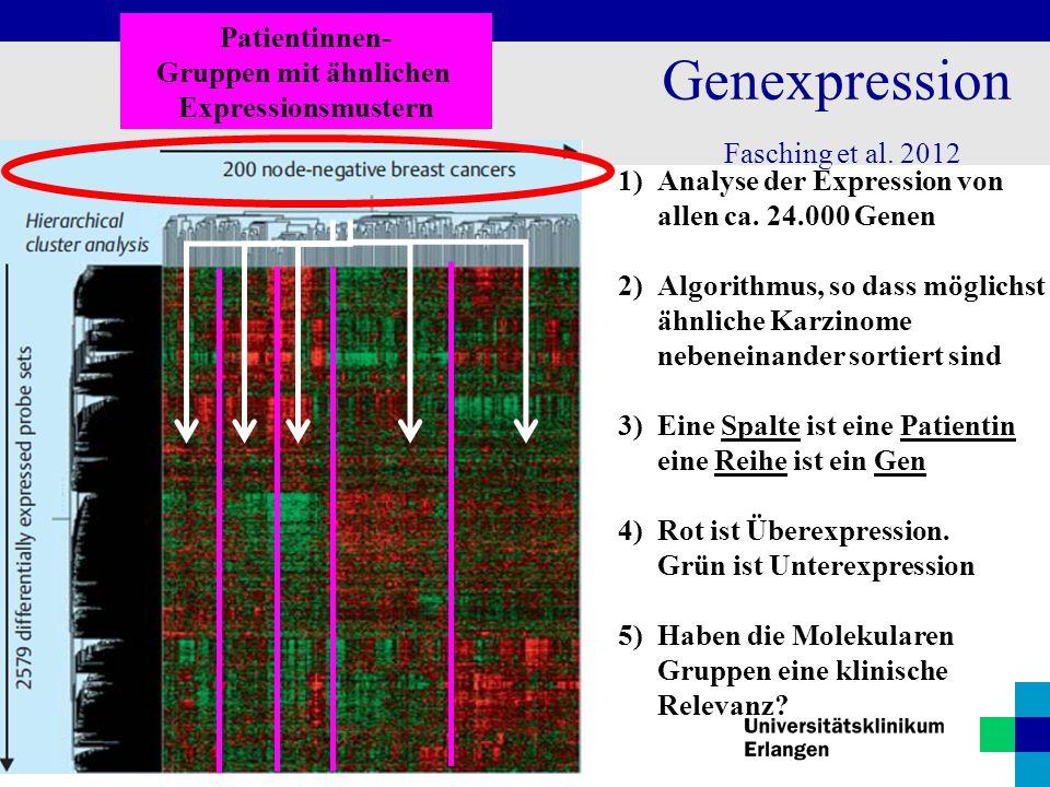 Radiologisches Institut / Gyn. Radiologie Genexpression 1)Analyse der Expression von allen ca. 24.000 Genen 2)Algorithmus, so dass möglichst ähnliche