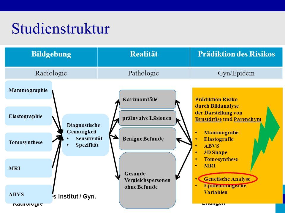 Radiologisches Institut / Gyn. Radiologie Studienstruktur BildgebungRealitätPrädiktion des Risikos RadiologiePathologieGyn/Epidem Karzinomfälle Benign
