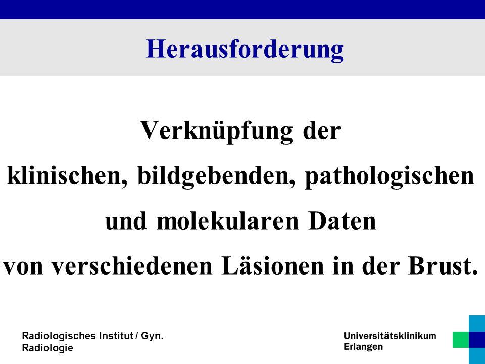 Radiologisches Institut / Gyn. Radiologie Herausforderung Verknüpfung der klinischen, bildgebenden, pathologischen und molekularen Daten von verschied