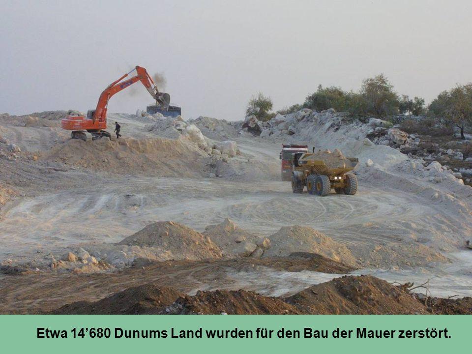 Etwa 14'680 Dunums Land wurden für den Bau der Mauer zerstört.