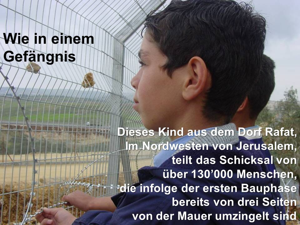 Wie in einem Gefängnis Dieses Kind aus dem Dorf Rafat, Im Nordwesten von Jerusalem, teilt das Schicksal von über 130'000 Menschen, die infolge der ersten Bauphase bereits von drei Seiten von der Mauer umzingelt sind von der Mauer umzingelt sind