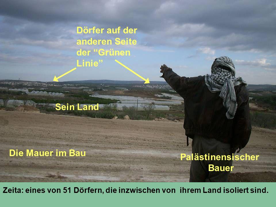 Zeita: eines von 51 Dörfern, die inzwischen von ihrem Land isoliert sind. Palästinensischer Bauer Sein Land Die Mauer im Bau Dörfer auf der anderen Se