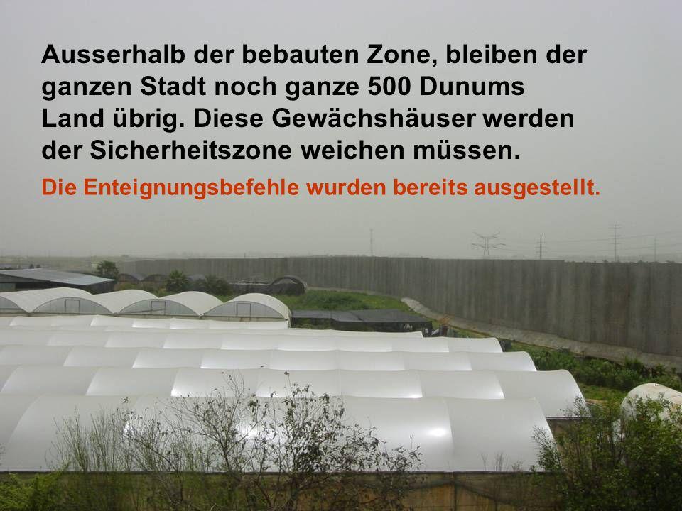 Ausserhalb der bebauten Zone, bleiben der ganzen Stadt noch ganze 500 Dunums Land übrig. Diese Gewächshäuser werden der Sicherheitszone weichen müssen