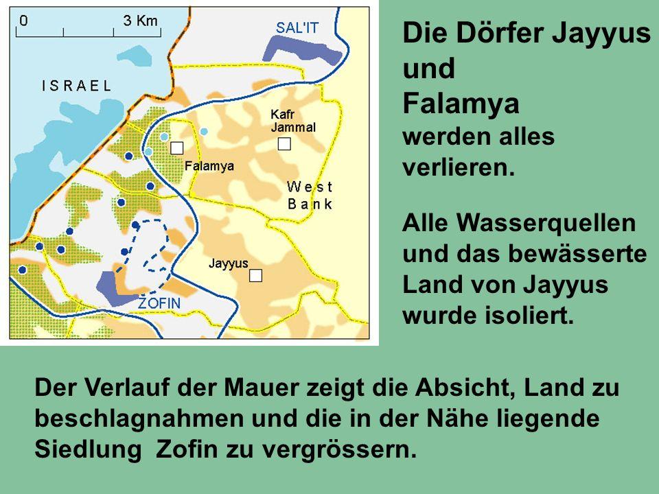 Die Dörfer Jayyus und Falamya werden alles verlieren. Alle Wasserquellen und das bewässerte Land von Jayyus wurde isoliert. Der Verlauf der Mauer zeig