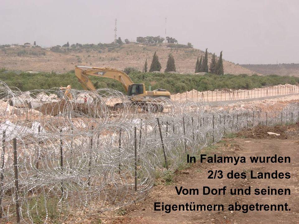 Falamieh 20/5/2003 In Falamya wurden 2/3 des Landes Vom Dorf und seinen Eigentümern abgetrennt.