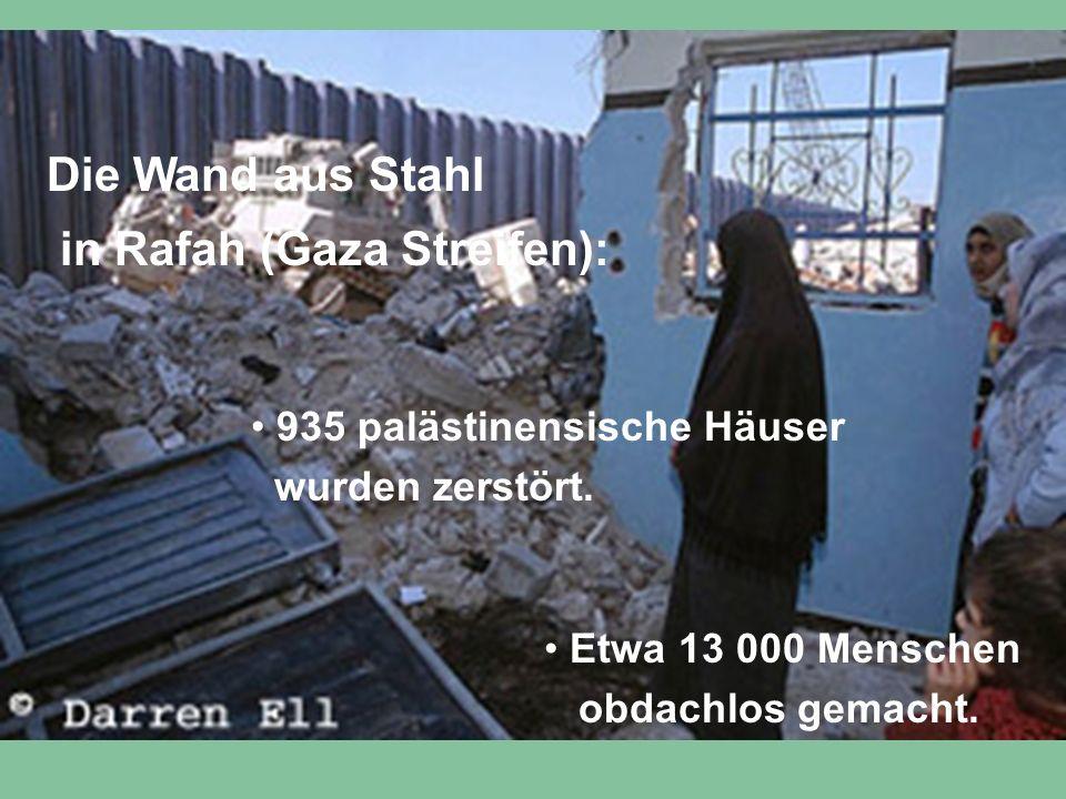 Die Wand aus Stahl in Rafah (Gaza Streifen): 935 palästinensische Häuser wurden zerstört. Etwa 13 000 Menschen obdachlos gemacht.