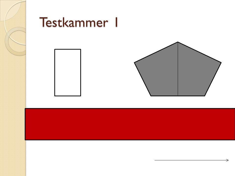 Testkammer 1