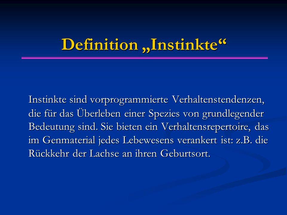 """Definition """"Instinkte"""" Instinkte sind vorprogrammierte Verhaltenstendenzen, die für das Überleben einer Spezies von grundlegender Bedeutung sind. Sie"""