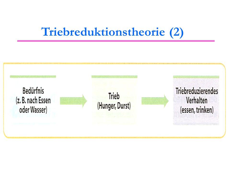 """Triebreduktionstheorie (3) Ein Trieb kann entweder durch einen Ein Trieb kann entweder durch einen Mangelzustand oder durch ein Mangelzustand oder durch ein Energieüberschuss entstehen (""""Dampfkesselmodell )."""